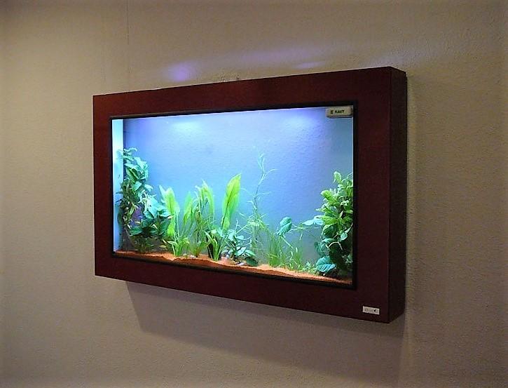 Dreamon aquariums suspendus gamme wall for Aquarium plat
