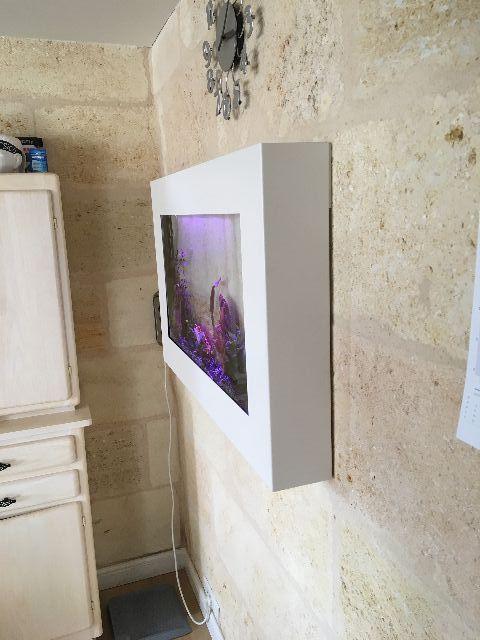 Dreamon aquariums suspendus gamme wall for Aquarium cadre