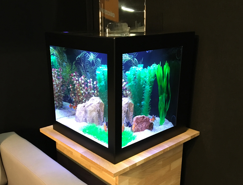 Aquarium decoratif interieur amazing terrarium dcoratif for Aquarium interieur