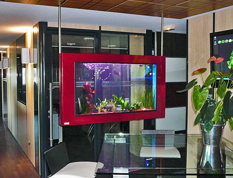 Aquarium d interieur design accueil nos gammes daquariums for Aquarium interieur