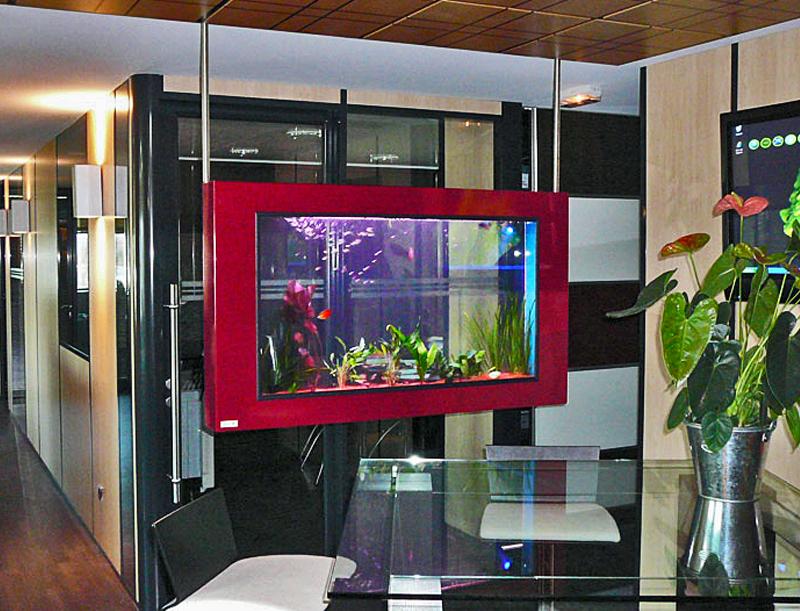 Aquarium Decoration Design : Dream on aquariums accueil
